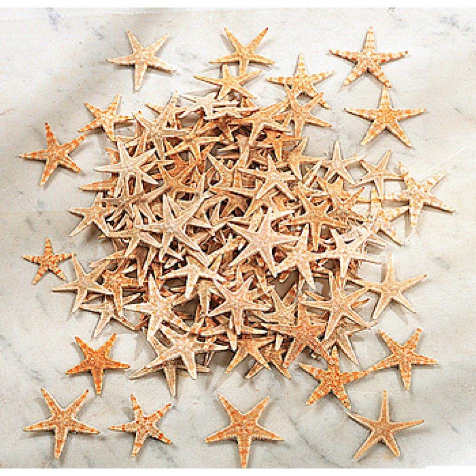 Mini Natural Starfish (500 pcs per box) [F34-466 Bulk Mini Starfish] : Wholesale Wedding Supplies, Discount Wedding Favors, Party Favors, and Bulk Event Supplies