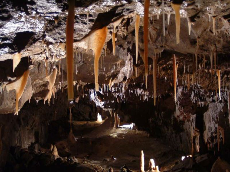 Stump-Cross Caverns