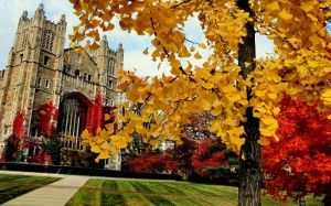 An entrance to the University of Michigan Law Quad in Autumn 2008