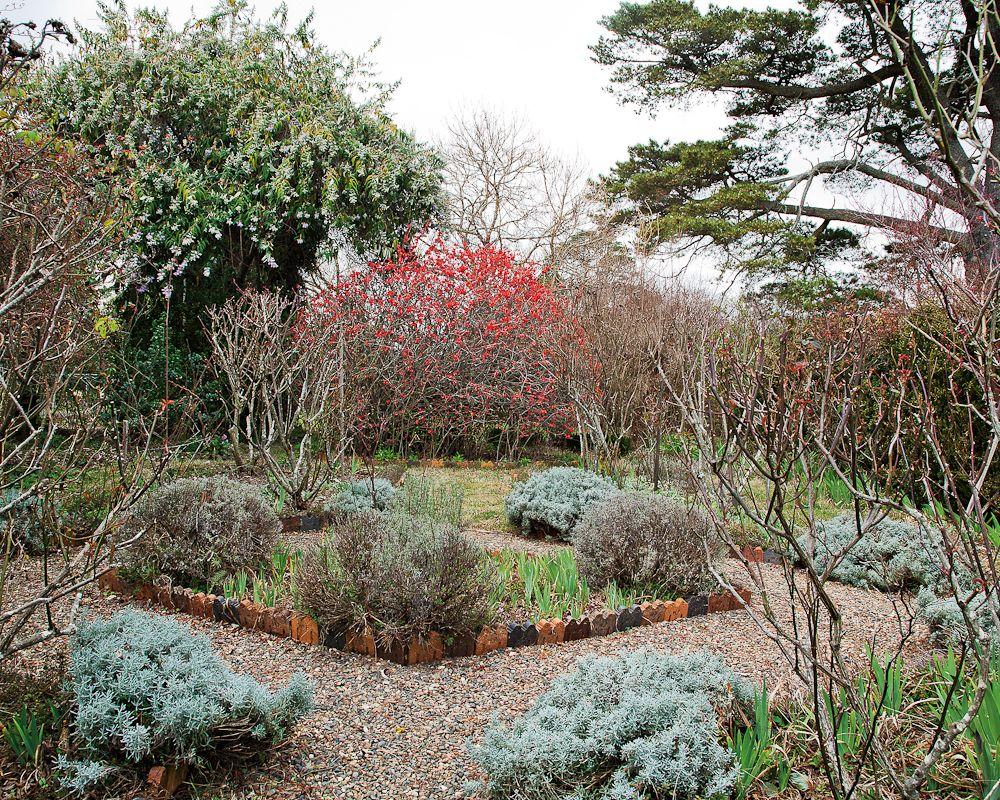 Invergowrie garden