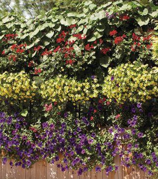ferie botanique dco exterieur jardinmon - Les Idees De Mon Jardin