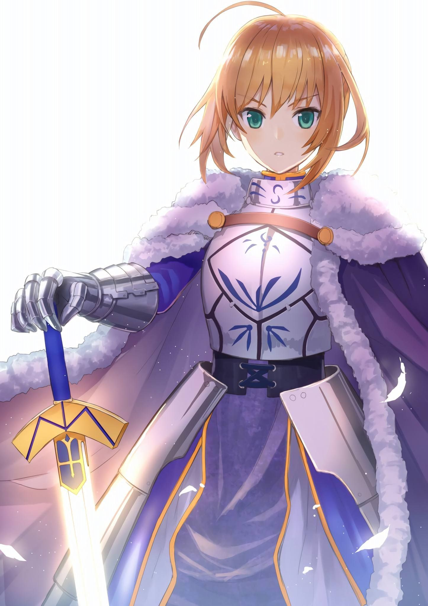 The King of Knights Saber Fate anime series, Fate stay
