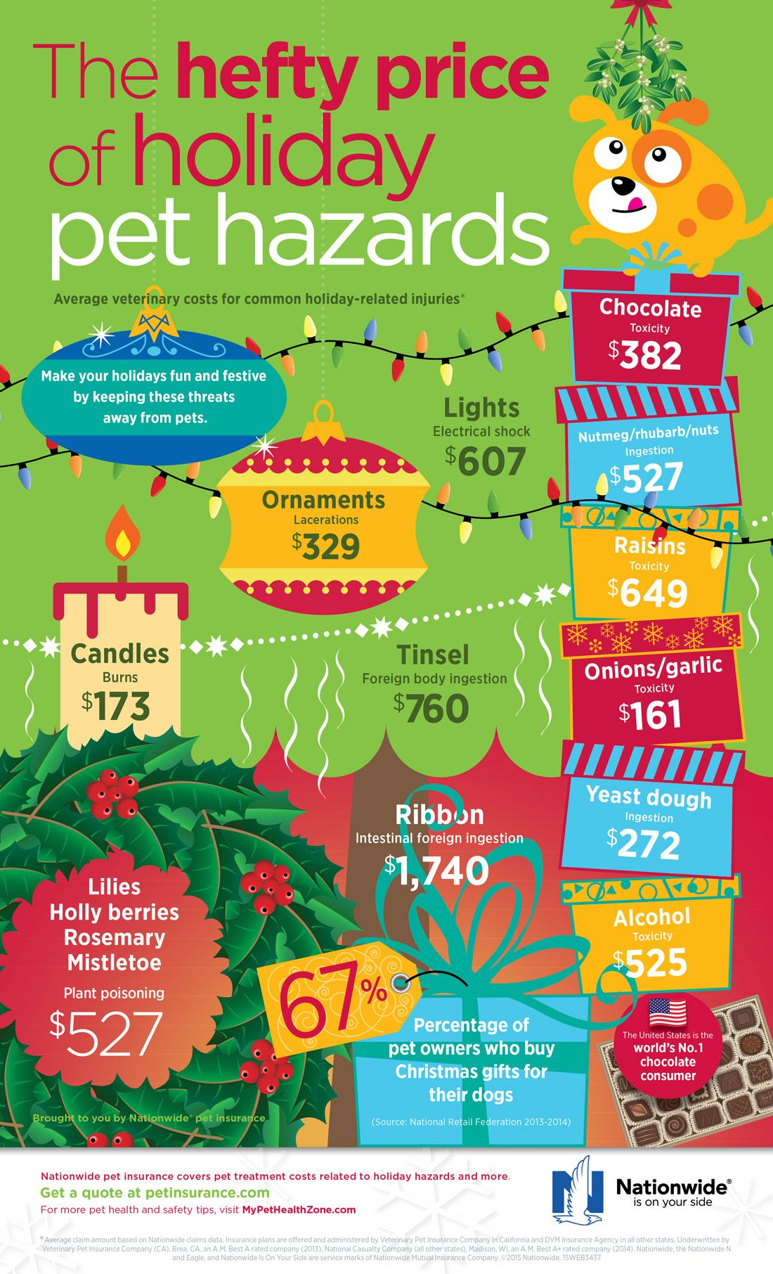 Holiday Pet Hazards Infographic Pet Holiday Pet Health Insurance Animal Infographic