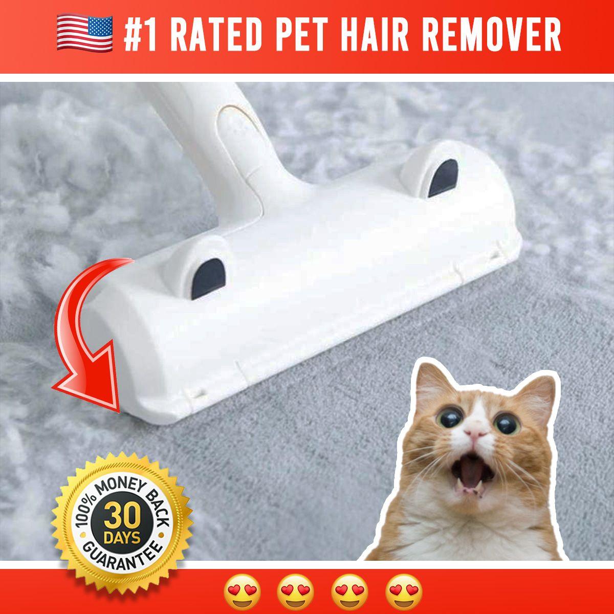 9547cc7a07fad8e57f66a18c0dd0361b - How To Get Cat Hair Off Without Lint Roller