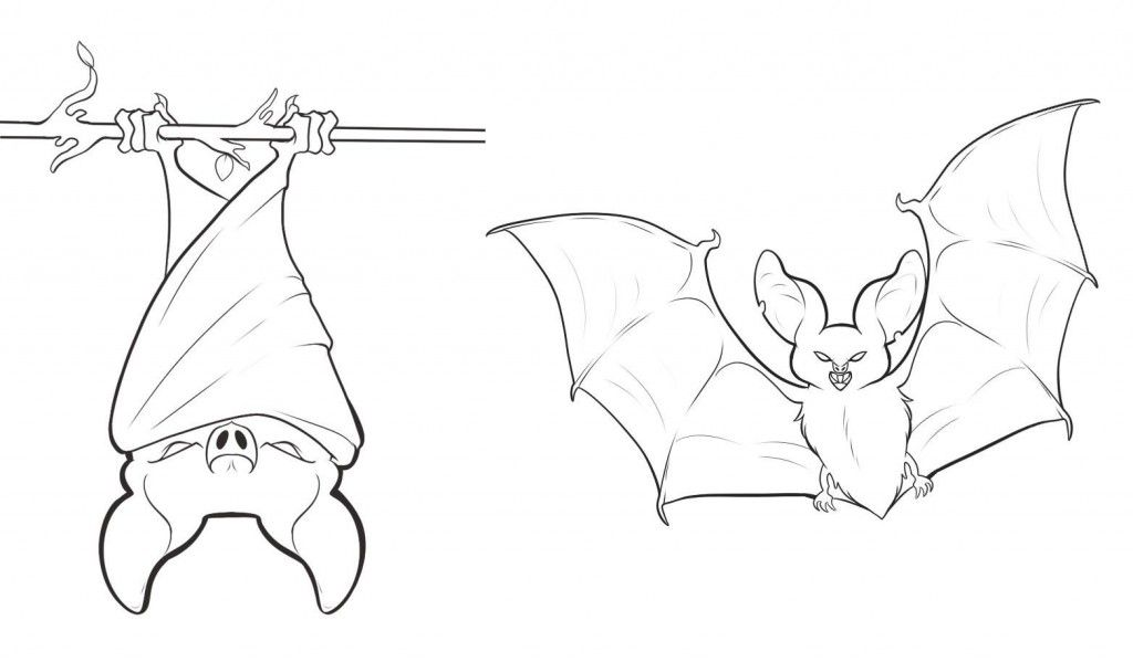 Vampire Bat Coloring Page | Bat coloring pages, Halloween lesson ... | 599x1024