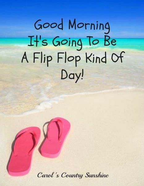 35db3cfb0694f2 Flip flop kind of day quote via Carol s Country Sunshine on Facebook ...