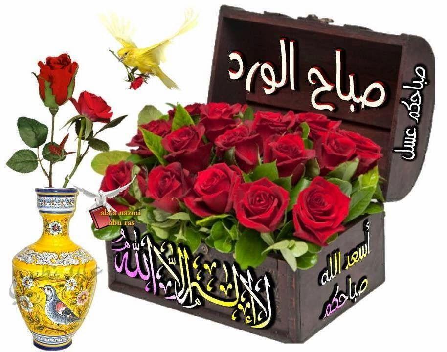 مدونة عمو Beautiful Chickens Decorative Boxes Blog
