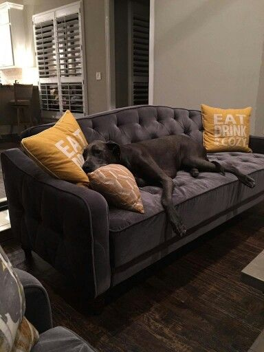 Walmart Living Room Wall Decor: Available At Walmart. 9 By Novogratz Tufted Sofa Sleeper