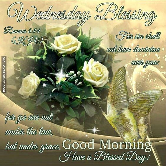 Blessed Day Quotes From The Bible: Wednesday Blessings, Good Morning Good Morning Wednesday