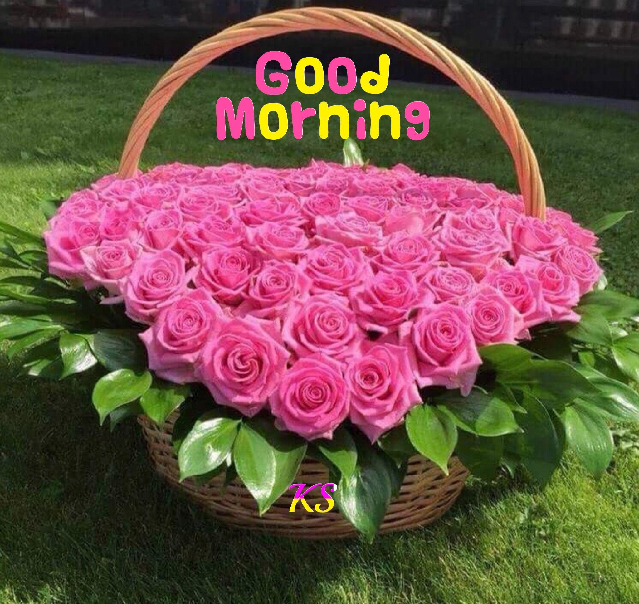 Pin By Kanchan Sunil On Good Morning Pinterest Flowers Pretty