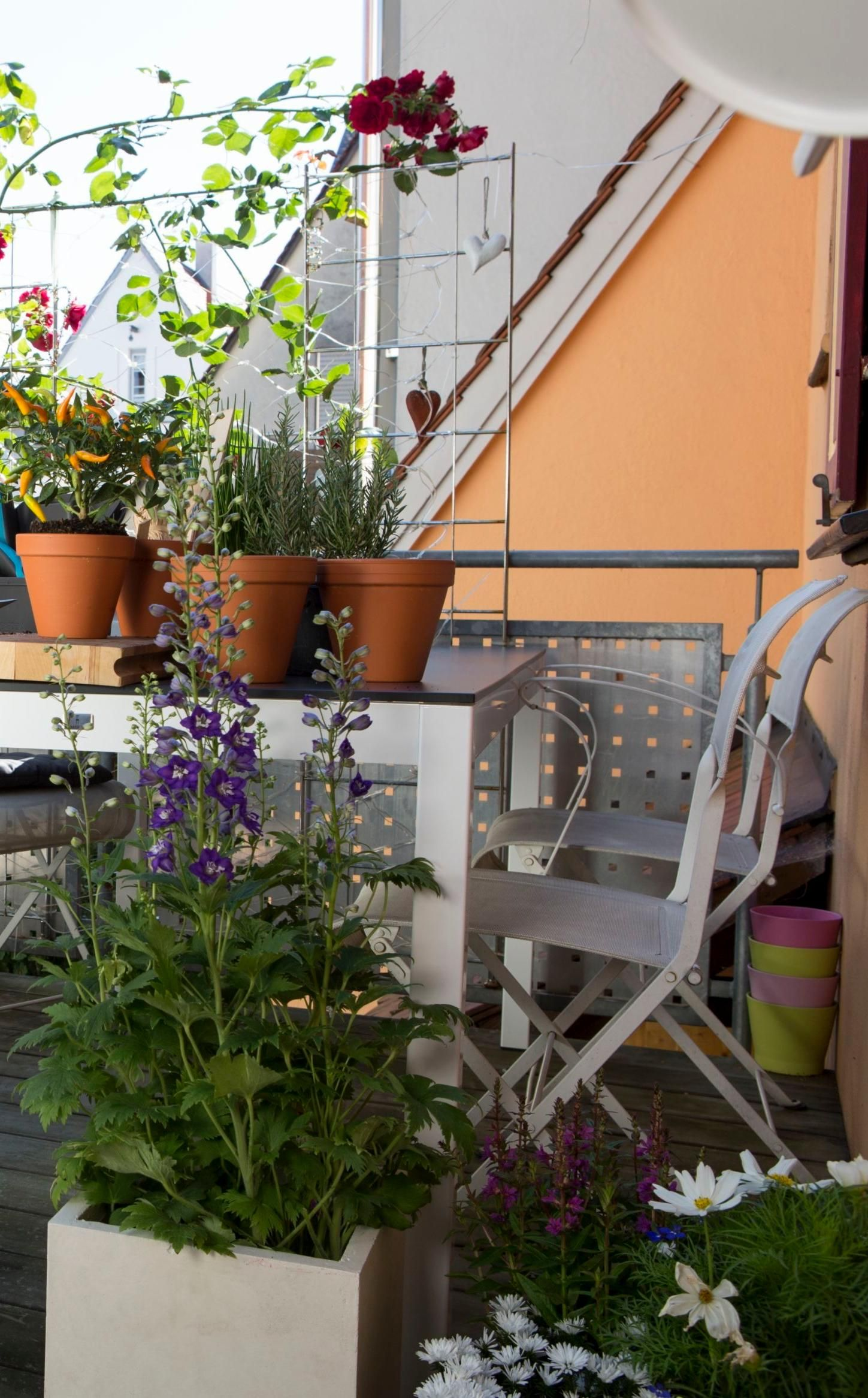 Epingle Sur Planter Et Replanter
