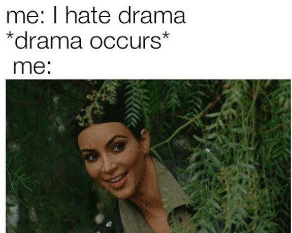 38 Melodramatic Memes For Anyone Dealing With A Self