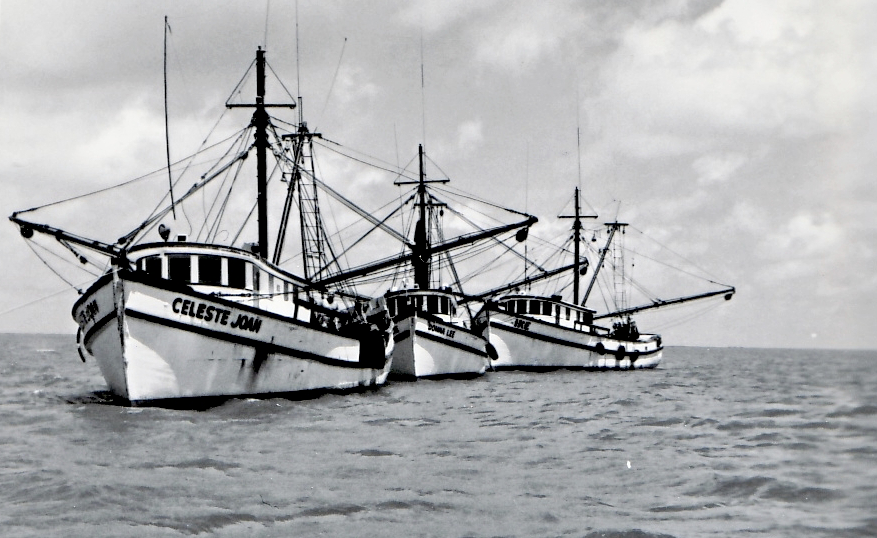 Shrimp Boats Bayou La Batre Alabama Where The Best Seafood