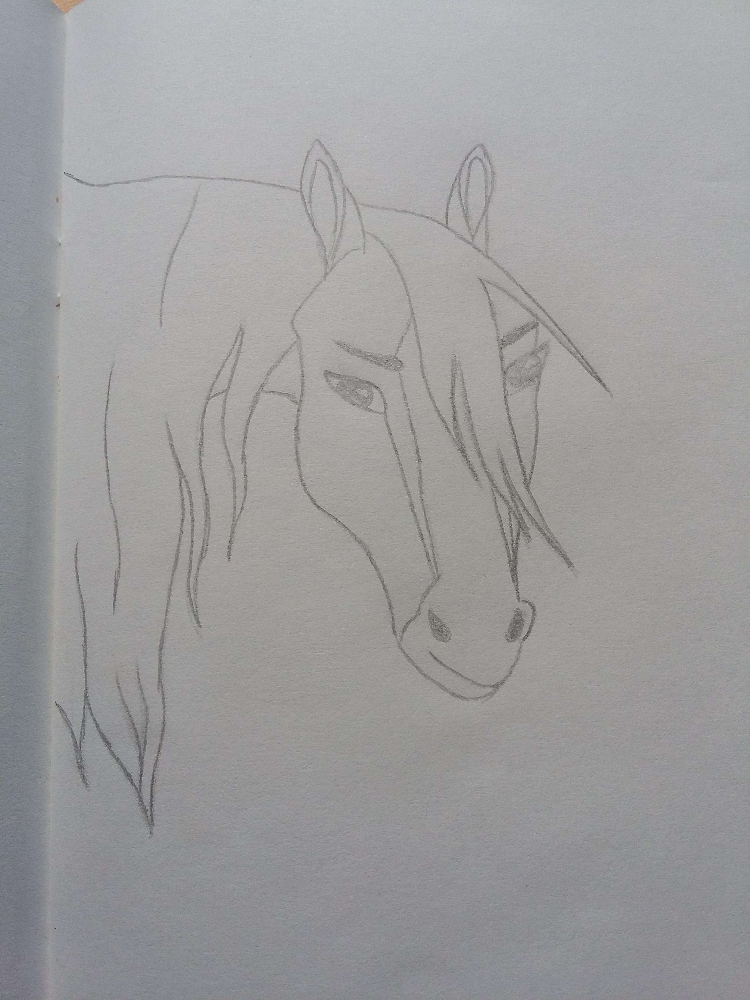 Zeichnen Bleistift Pferd Rain Myart In 2019 Pinterest