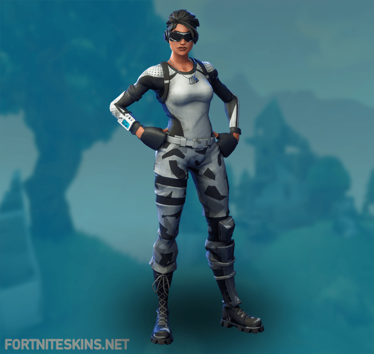 Fortnite Arctic Assassin Outfits Fortnite Skins Fortnite Dc Costumes Character Outfits
