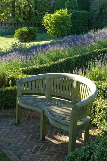 Garden Bench Love The Lavender Hedge Too With Images 400 x 300