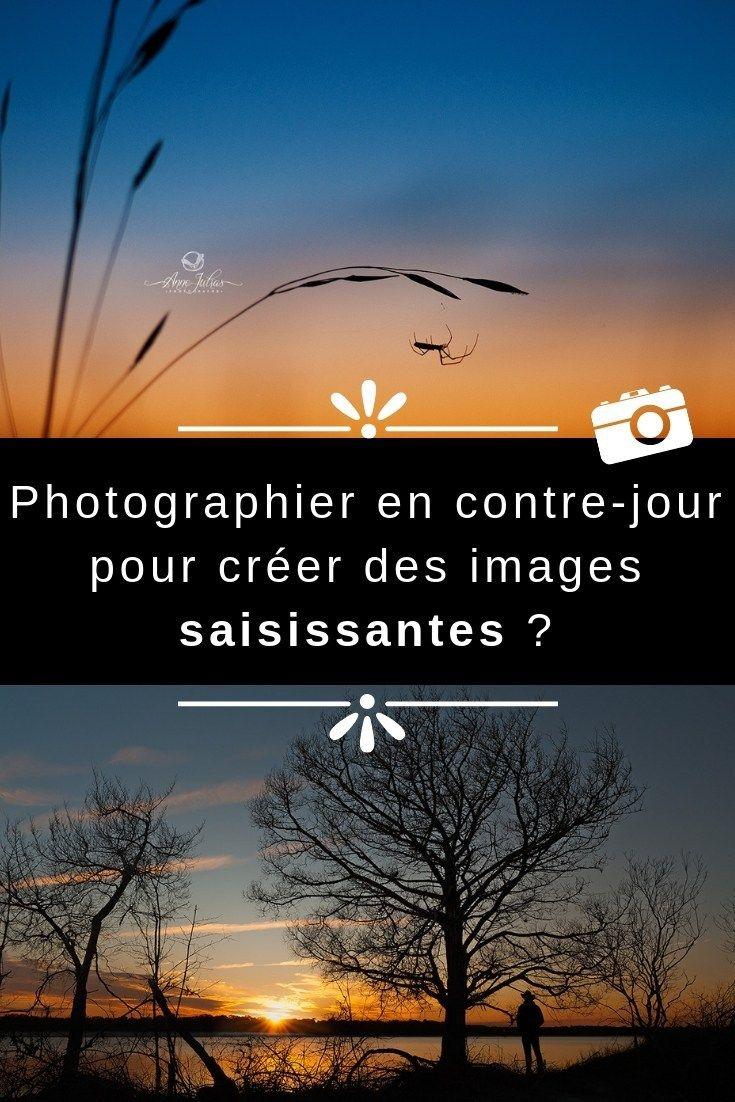 Photographier en contre-jour pour créer des images saisissantes ?