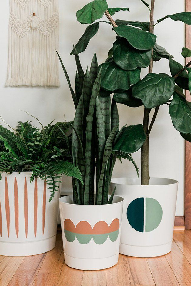 Amazon + Paint + Free Templates   These Cool Plant Pots is part of Plant pot design, Painted plant pots, Plant pot diy, Diy flower pots, Plant decor, Painted flower pots - Today, we're teaching you how to take a white planter from 'plain' to 'Pinterestworthy' using nothing but paint  Hop through here for the DIY tutorial, including three printable templates to choose from in case you don't trust yourself to freehand the design!