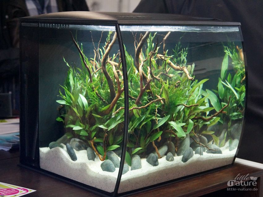 Aquascape Ideas Fluval Flex Aquascape