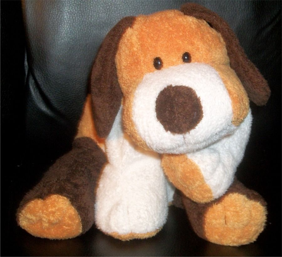 tylux puppy