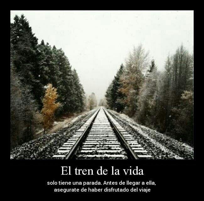 El Tren De La Vida Tren De La Vida Viaje En Tren Y Viajar