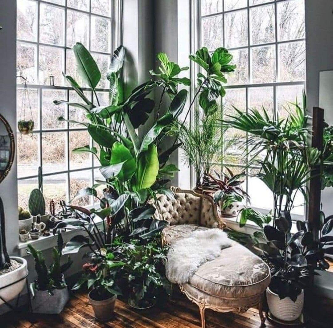 Smallspace Living: Garden, Living Room Decor