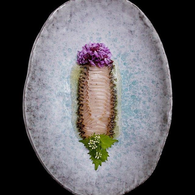 Abalone, wild mustard | Juni, photo by Signebirck