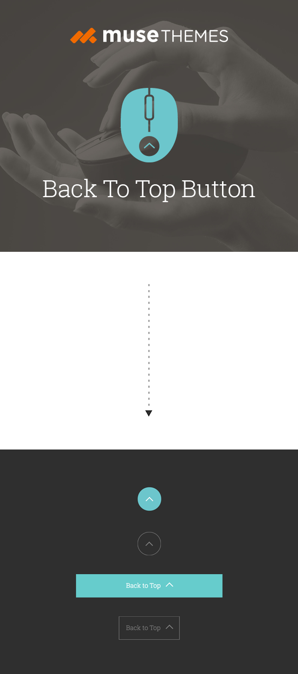 FREE Back To Top Button for Adobe Muse  This button appears as users
