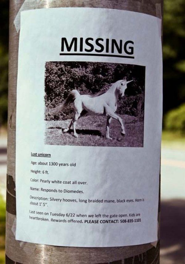 10 Missing Poster Signs That Are As Funny as They Are Weird - lost pet poster