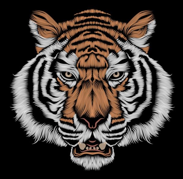 Le Tigre By Patrick Seymour Via Behance Patrick Seymour Digital Illustration Illustration Art