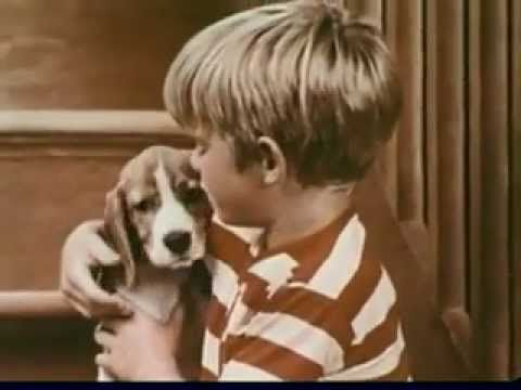 Vintage Old 1970 S Gaines Gravy Train Dog Food Commercial