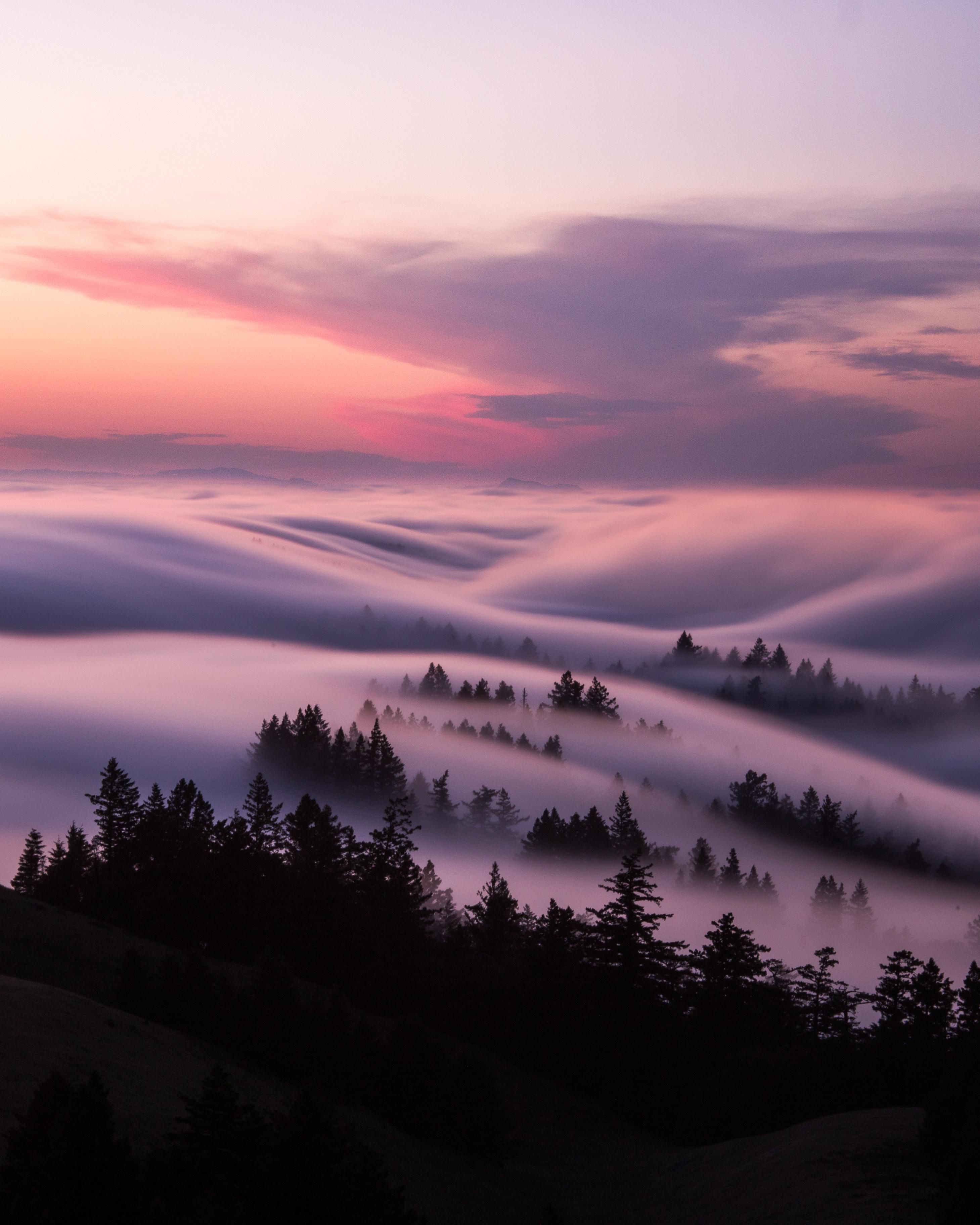 Fog Flow And Storm Clouds On Mt Tam Codymayer22 Beautifulnature Naturephotography Pho Fog Photography Beautiful Landscape Photography Clouds Photography