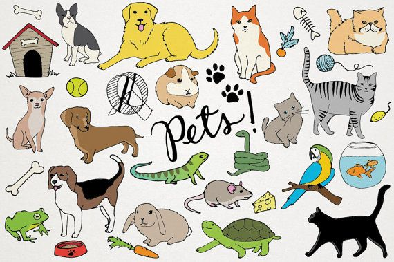 Pets Clipart Animals Clip Art Cats And Dogs Hand By Lemonadepixel