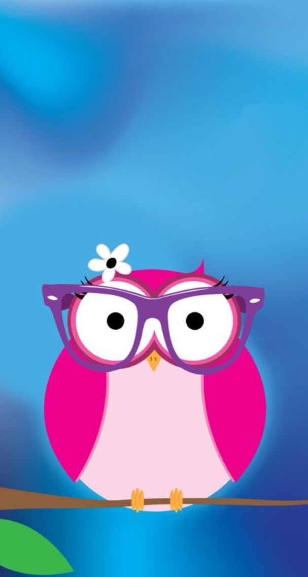 Funny Wallpaper Iphone Owl Wallpaper Iphone Owl Wallpaper
