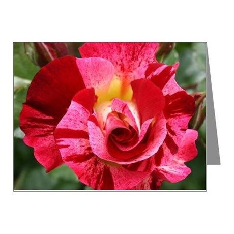 Rose Blossom Note Cards (Pk of 10) on CafePress.com #love #valentines #gift #shopping