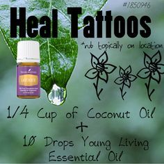 Heal Tattoos With Young Living Essential Oils Body Young Living