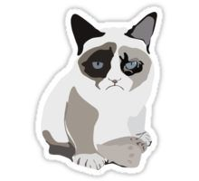 Grumpy cat Sticker