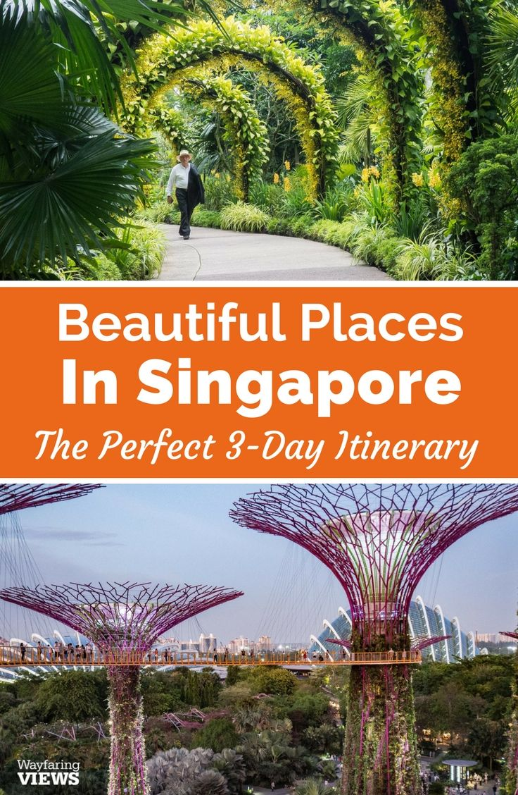 A 3 Day Singapore Itinerary For Art And Nature Lovers Singapore Itinerary Singapore Travel Singapore Travel Tips