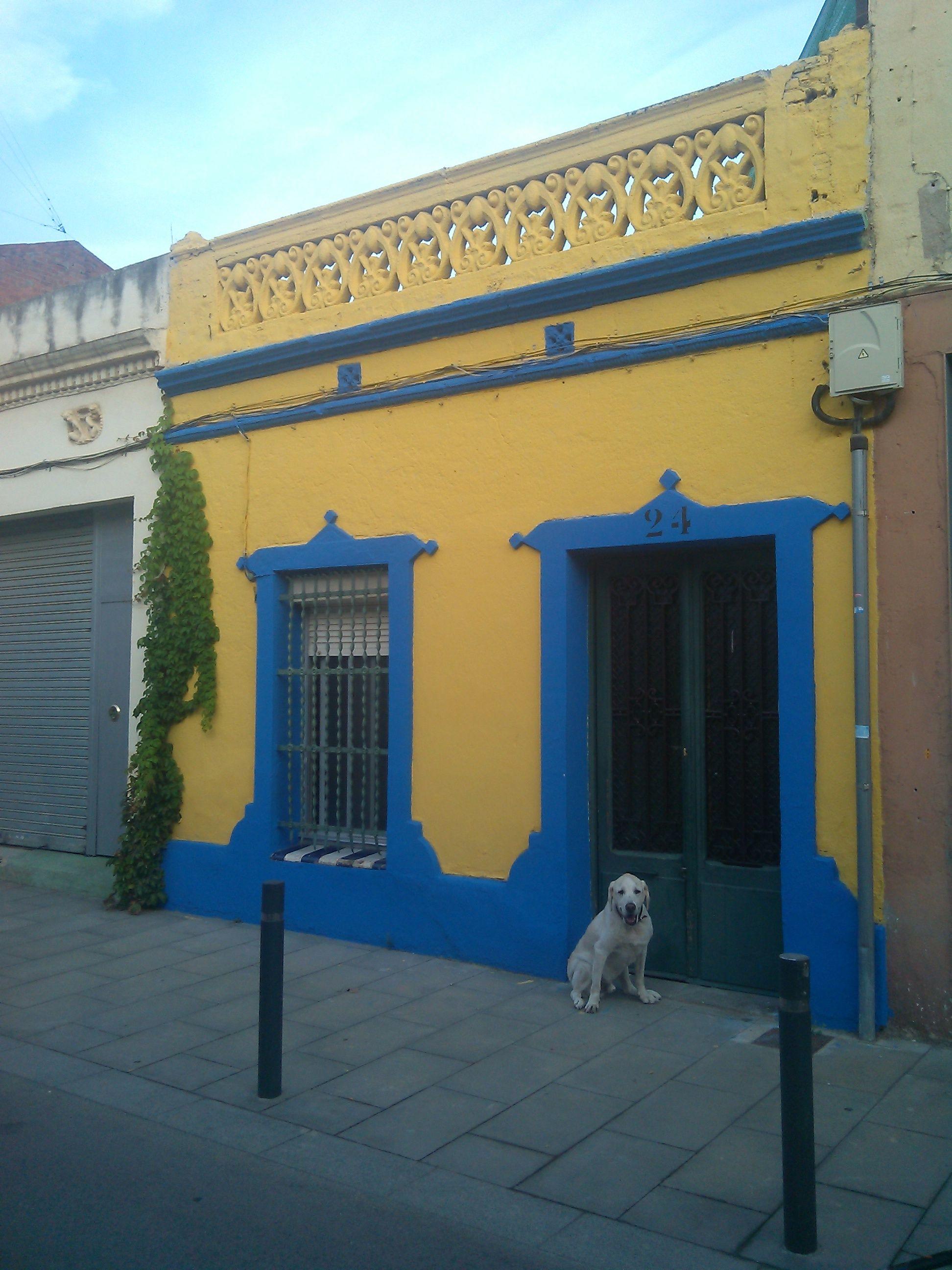 Pet Sitters Barcelona; Casa - Residencia Canina Familiar en Barcelona; Somos una familia amantes de los animales contacto a  http://residenciacaninafamiliar.blogspot.com.es/2014/02/residencia-canina-familiar-en-barcelona.html
