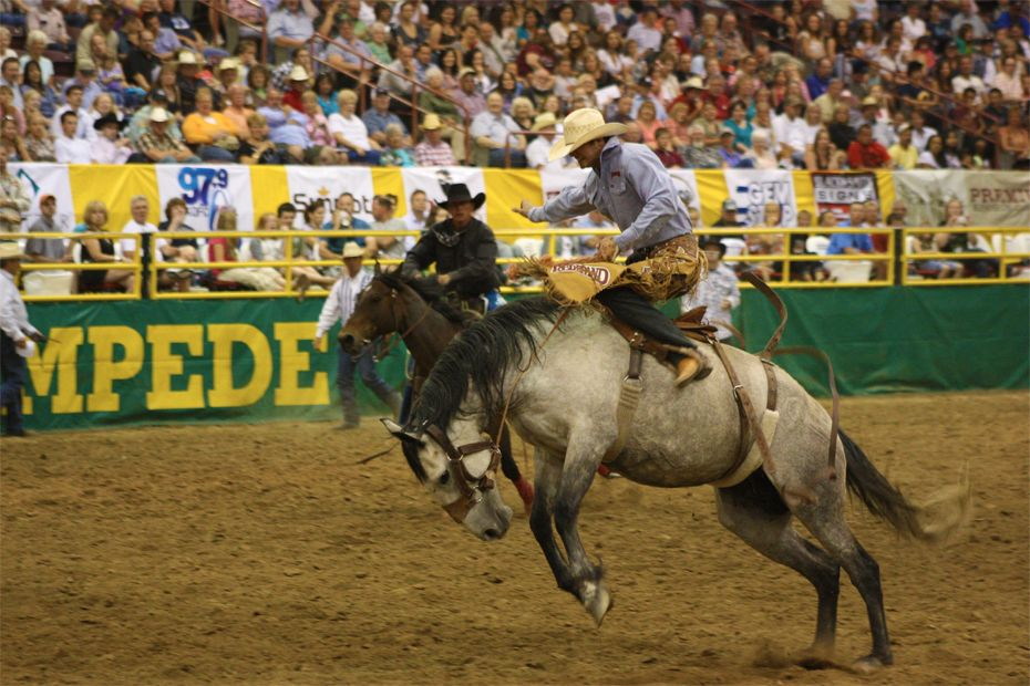 The Snake River Stampede. Not only an Idaho classic, but a great American rodeo.