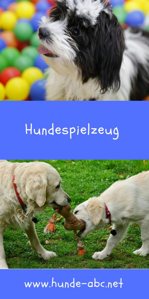 Hundespielzeug Onlineshop Gunstig Kaufen 30 Hundespielzeug Spielzeug Hund Hunde