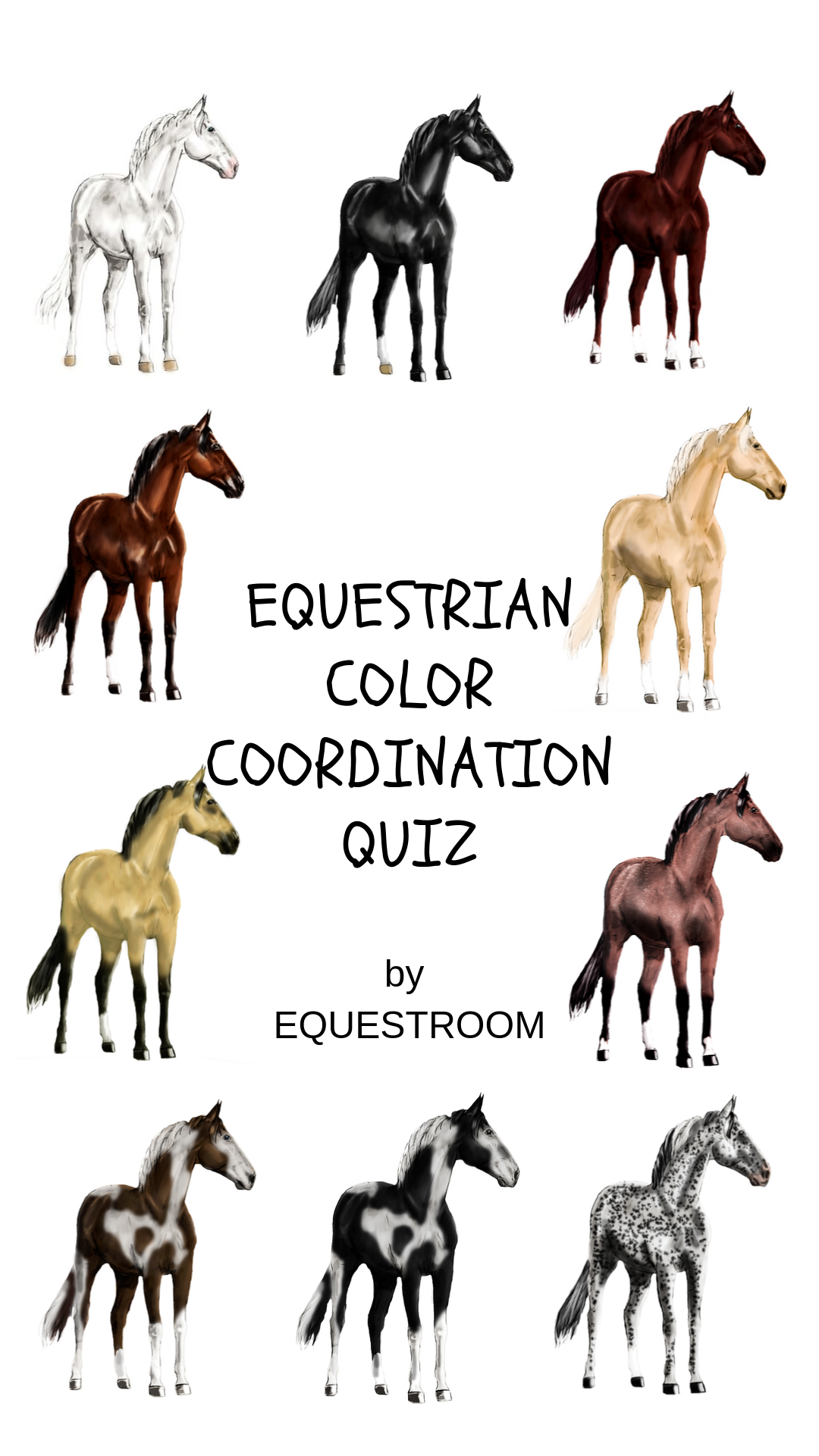 Coat Color Coordination Quiz By Equestroom Check It And See The Match Match For Your Horse Equine Eques Horse Coat Colors Coordinating Colors Equestrian [ 1920 x 1080 Pixel ]