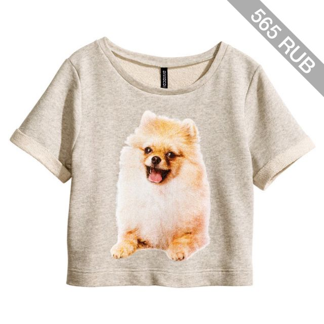 H&M Sweatshirt top