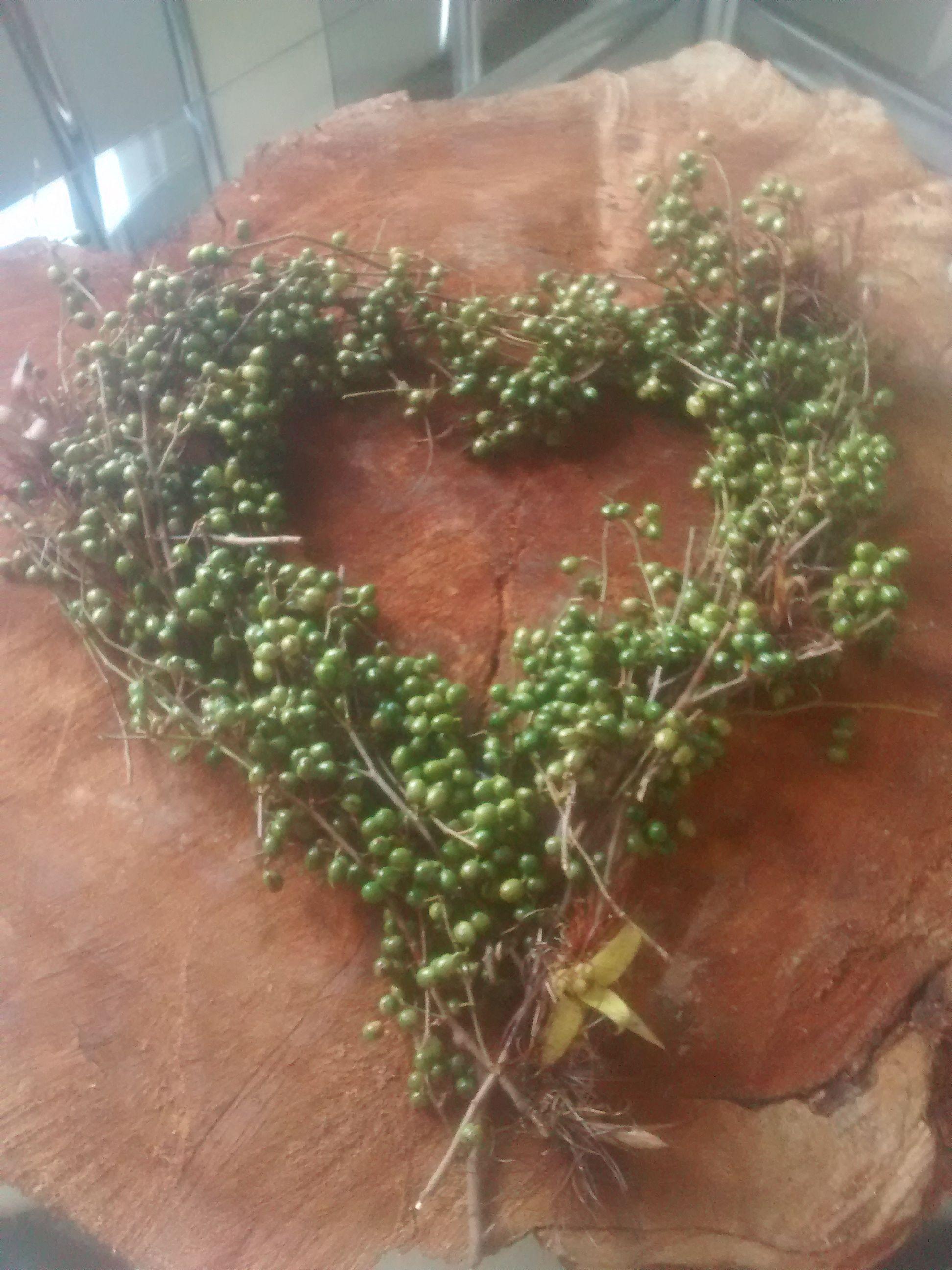coração de sementes - heart of beans