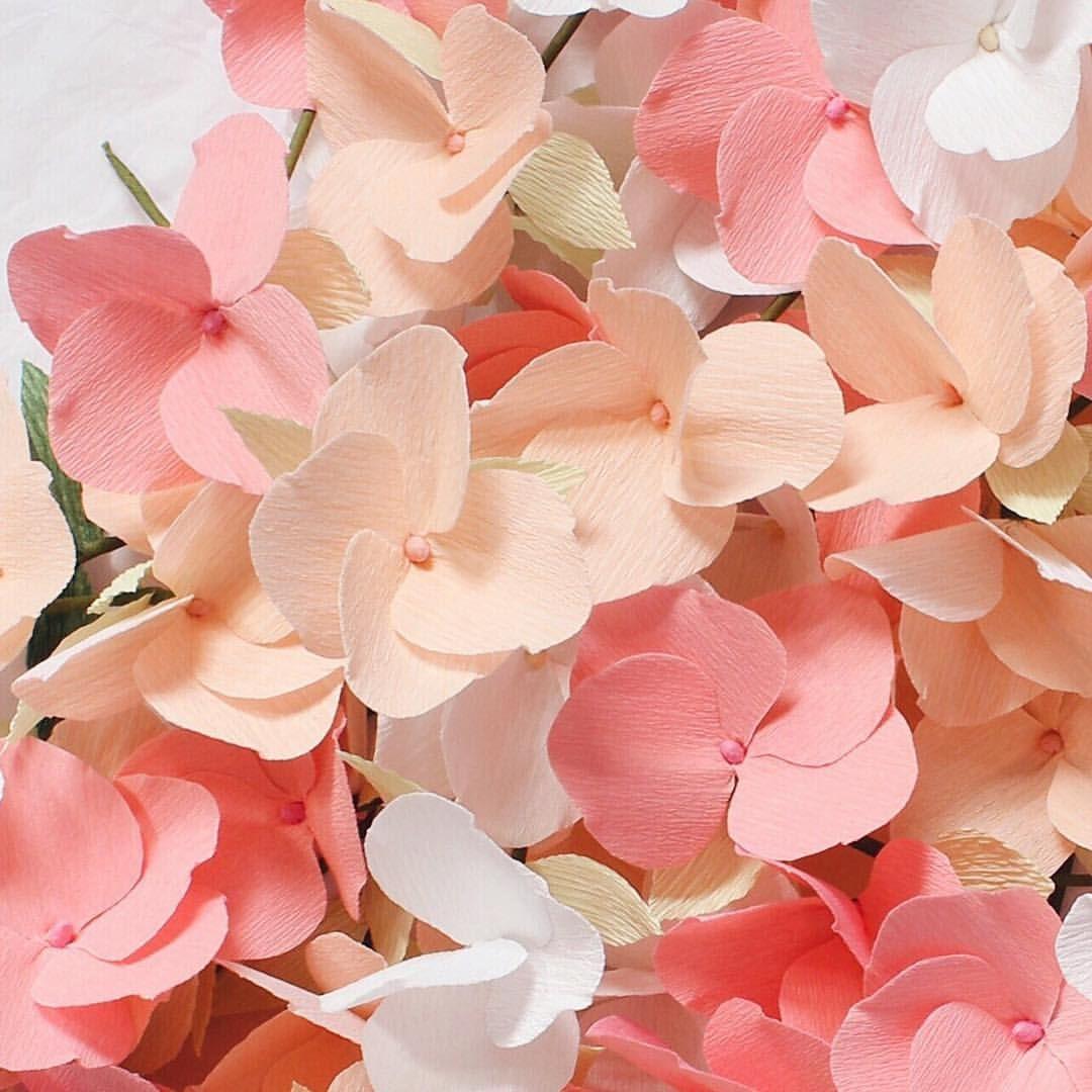 Paper flowers by apetalunfolds  paper flowers  Pinterest