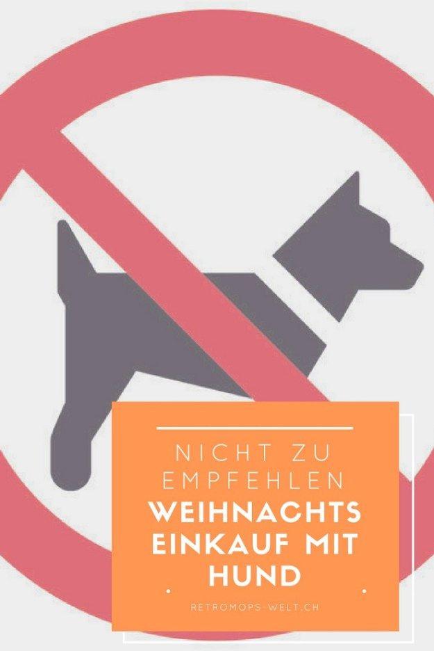 Weihnachtseinkauf mit Hund sollte verboten sein. Hunde und