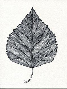 leaf drawing - Google 搜尋