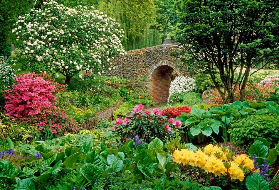 Images Gardens the garden analogy | gardens, beautiful flowers garden and