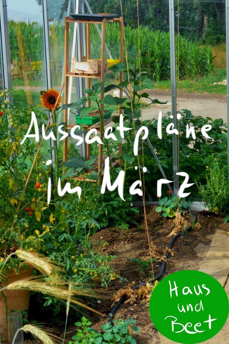 Aussaatplane Im Marz Jetzt Ist Alles Moglich Haus Und Beet Garten Anpflanzen Garden Types Gartenarten