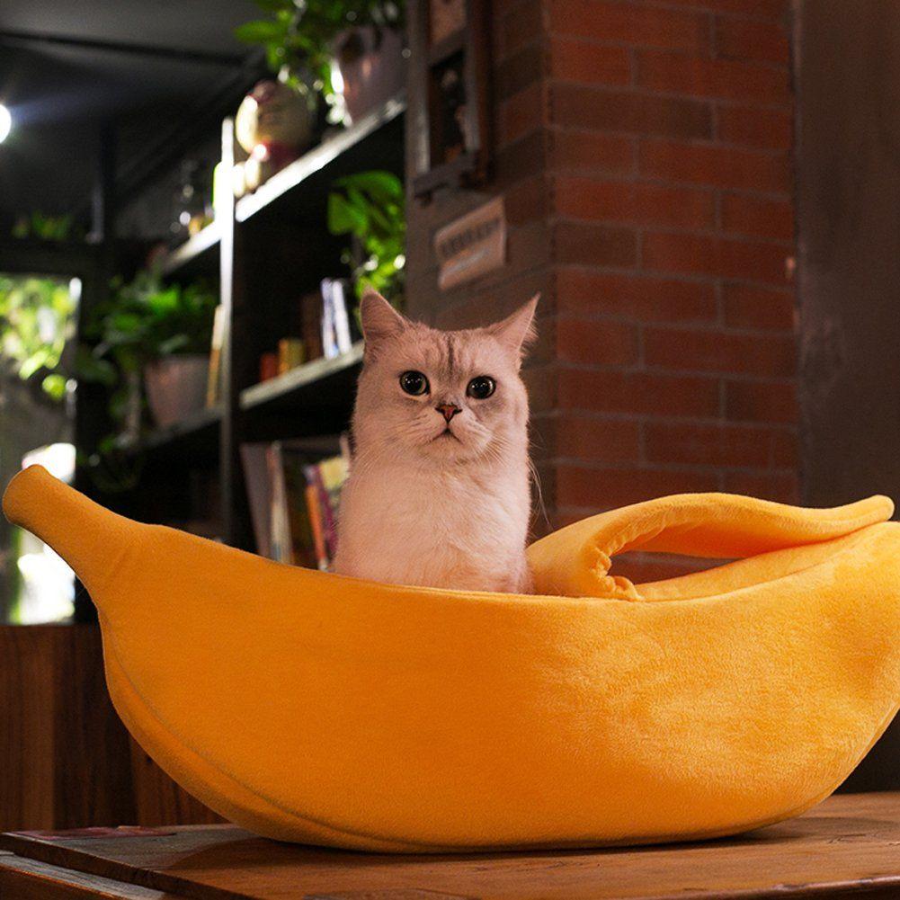 Small Dog Bed Wildgirl Lovely Pet Dog Cat Warm Banana